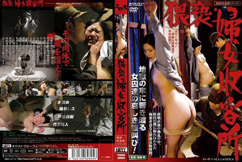 VNDS-2895 猥褻婦女収容所
